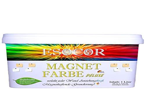 1 Liter ESOCOR MAGNETFARBE DELUXE + 1 Pin Magnet – allergikerfreundlich – Ideal für Innen- und Aussenflächen