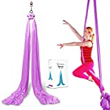 TURBONICE Aerial Silk Cloths-5 Meters/5.5 Yards Silk-Trapeze Yoga Set-Daisy Chain Clips-Carabiners-Swivel-Figure 8 Descender-Indoor/Outdoor-11 Colors (Light Purple)