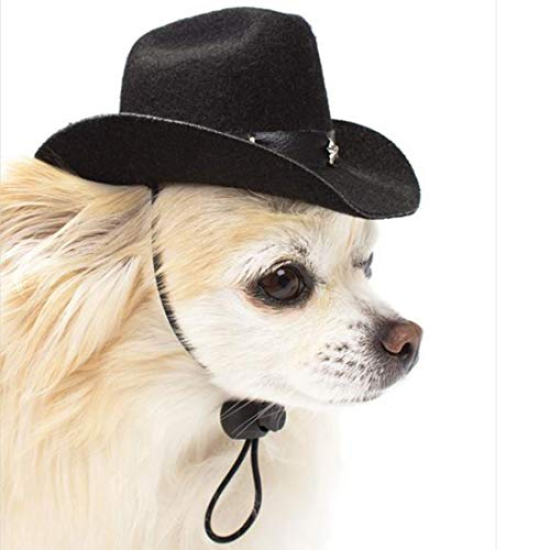 Girl Hats,Pets Hats,for Hallowen,Christamas Party (Black Cowboy hat)