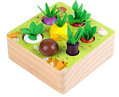 Wooden Toys for 1 Year Old Boys and Girls Montessori Shape Size Sorting Puzzle Happy Farm Developmental Newborn First Birthday Gifts for Fine Motor Skill from Ancaixin
