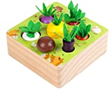 Wooden Toys for 1 Year Old Boys and Girls Montessori Shape...