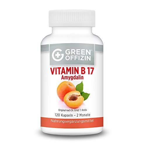 Green Offizin Vitamin B17 I 1000 mg Aprikosenkern-Extrakt pro Tagesdosis + 160 mg natürlichem Vitamin C der Acerola-Kirsche I Bittere Aprikosenkerne hochdosiert & naturbelassen (120 Kapseln)