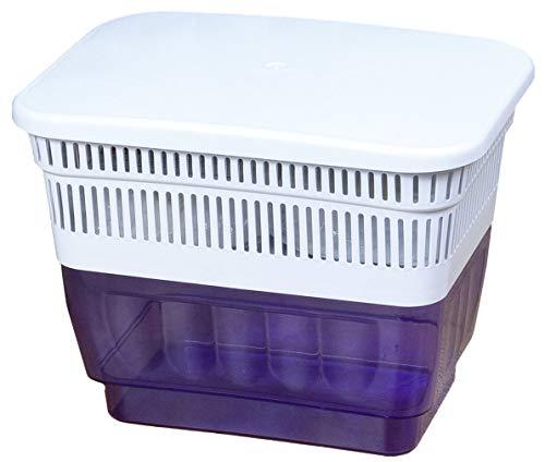 WELLGRO Luftentfeuchter - 26 x 19 x 20 cm (LxBxH), 2 kg Trocknungsgranulat, Kunststoff, blau - Raumentfeuchter - Feuchtigkeitsmagnet