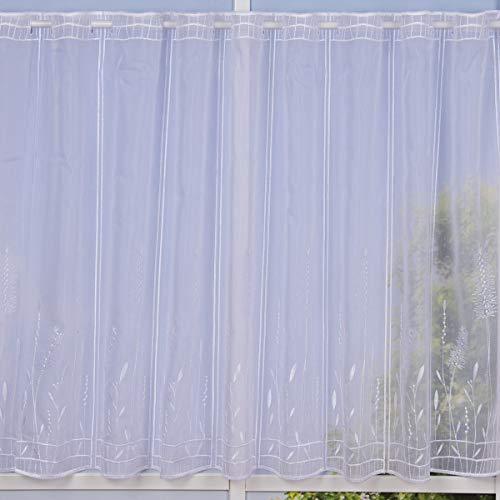 SCHÖNER LEBEN. Bistrogardine Scheibengardine Türbehang nähfrei Voile Stickerei Gräser weiß 70cm Höhe