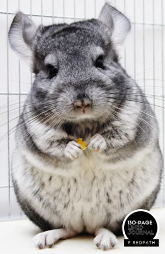 CHINCHILLA: A LINED NOTEBOOK & JOURNAL: An Awesome Chinchilla Notebook With Lined Interior - Great Gift For Animal Lovers