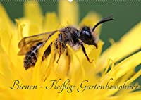 Bienen - Fleissige Gartenbewohner (Wandkalender 2022 DIN A2 quer): Faszinierende Nahaufnahmen der kleinen Nuetzlinge (Monatskalender, 14 Seiten )