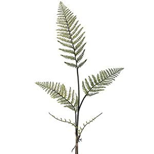 37.5″ Forest Fern Bundle x3 Green (pack of 12)
