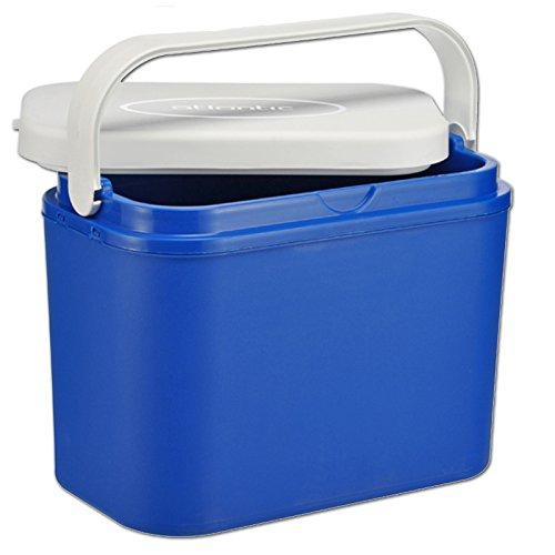 JEMIDI Kühlbox 10 Liter Mini Kühl Box Kühltasche Campingbox Isolierbox Isoliert Kleine Picknickbox Camping Schwimmbad Kühl Korb Taschen Taschen Isobox Boxen
