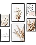 Heimlich Cuadros Decorativos - SIN Marcos -Decoración Colgante para Paredes de Sala, Dormitorios y Cocina - Arte Mural - 2 x A3 & 4 x A4-30x42 & 21x30 | » Pampas Boho Beige «