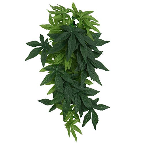 Planta Acuario Seda Marca Balacoo