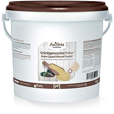 AniForte Grünlippmuschelpulver für Pferde 1kg - Natürliches Grünlippmuschel Pulver in Vollfettqualität, Omega 3 & 6 Fettsäuren, Glycosaminoglycane 3,3%, unterstützt Gelenke & Gelenkfunktion