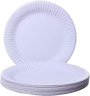 Party Paper Disposable Plates, 40 Pack [V-86122]