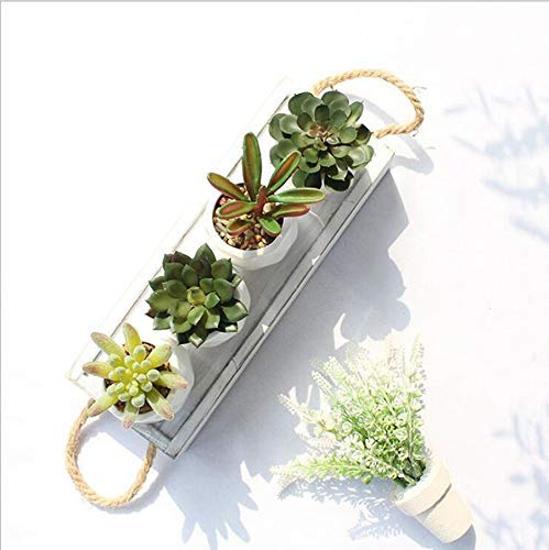 Simulation of Succulent Potted Plants Simulation of Succulent Bonsai Green Plants Potted Artificial Flowers Home Decoration Ornaments Artificial Fake Flowers Artificial Flowers