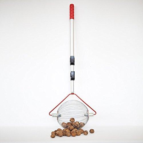 Collecteur pour Noyer – Avec manche télescopique – de la Flash à enrouleur – La Plus Petite aufsammel Machine le monde directement du fabricant pour noix, fruits Prunes, balles de golf etc. Argenté (Medium)