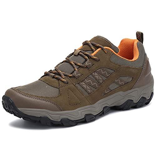 Dannto Zapatillas de Deporte Hombre Zapatos para Correr Aire Libre y Deporte Athletic Cordones Zapatillas De Running Trail Tenis Basket Respirable Gimnasio Sneakers (Marrón-H,41