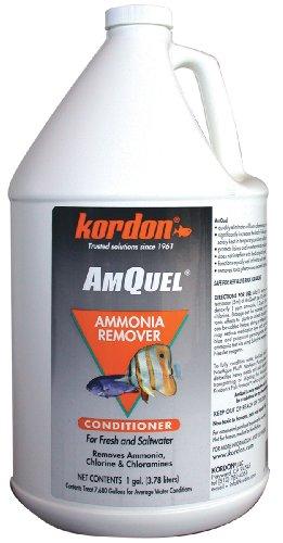 Kordon  #31262 AmQuel- Ammonia Detoxifier for Aquarium, 1-Gallon ONLY