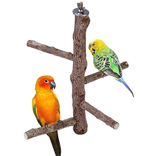 Acbungji -   Vögel Sitzstangen