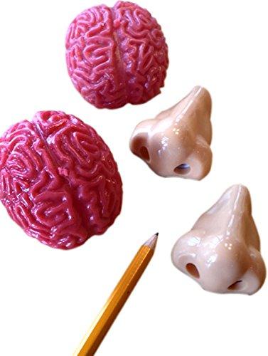 Nose Pencil Sharpener (2) and Brains Splat Ball (2) Novelty - 4 Pack