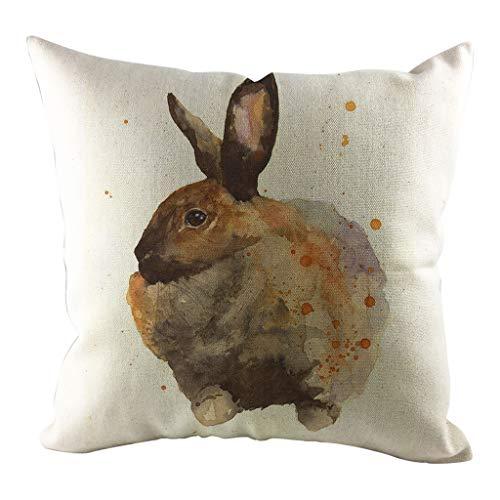 Soolike Conejo Día de Pascua Funda de Almohada Funda de sofá Funda de cojín Decoración casera Personalizada,Añade el Ambiente Festivo de la Pascua