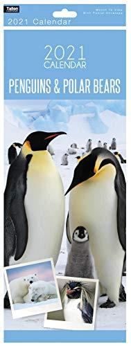 2021 Slim Monatsansicht Kalender Tiere & Wildlife Wandaufhänger Organizer Planer Pinguine und Eisbären