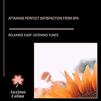 Attaining Perfect Satisfaction From Spa - Relaxing Easy Listening Tunes