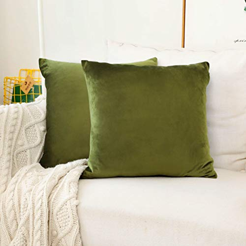 Home Brilliant Velvet Euro Shams Large Cushion Covers Pillow Case for Bedroom Floor Couch, Set of 2, 26 x 26 Inch(66cm), Avocado Green