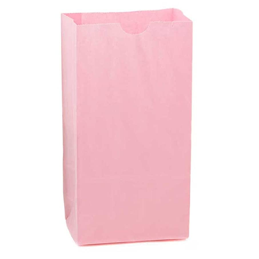 Hygloss Products Pink Paper Bags – For Party Favors, Arts, Crafts 4.5 x 8.5 x 2.5 Inch, 100 Pack