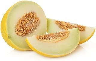 Honeydew Melon Golden Yellow Honeymelon Cucumis Melo Inodorus Seeds 50 PCS
