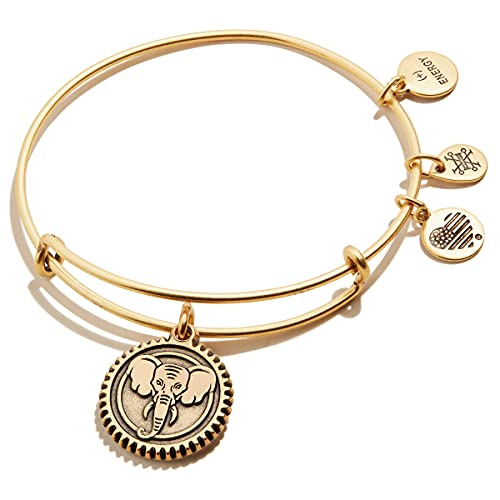 Alex and Ani Path of Symbols Expandable Bangle for Women, Elephant Embossed Charm, Rafaelian Gold Finish, 2 to 3.5 in, Small (A21EBELERG)