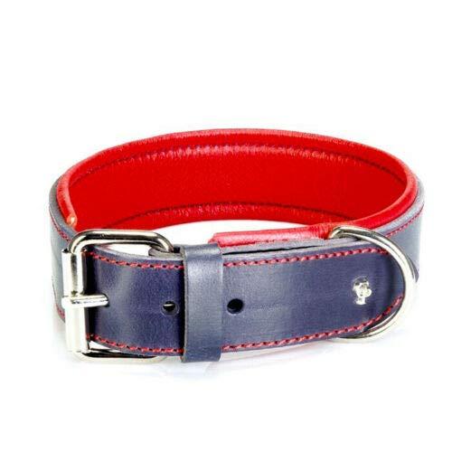 Cane Pazzolo Marittimo - extra breites Leder Hunde Halsband gepolstert breite 4cm Blau extra (70cm (Halsumfang 54-62cm))