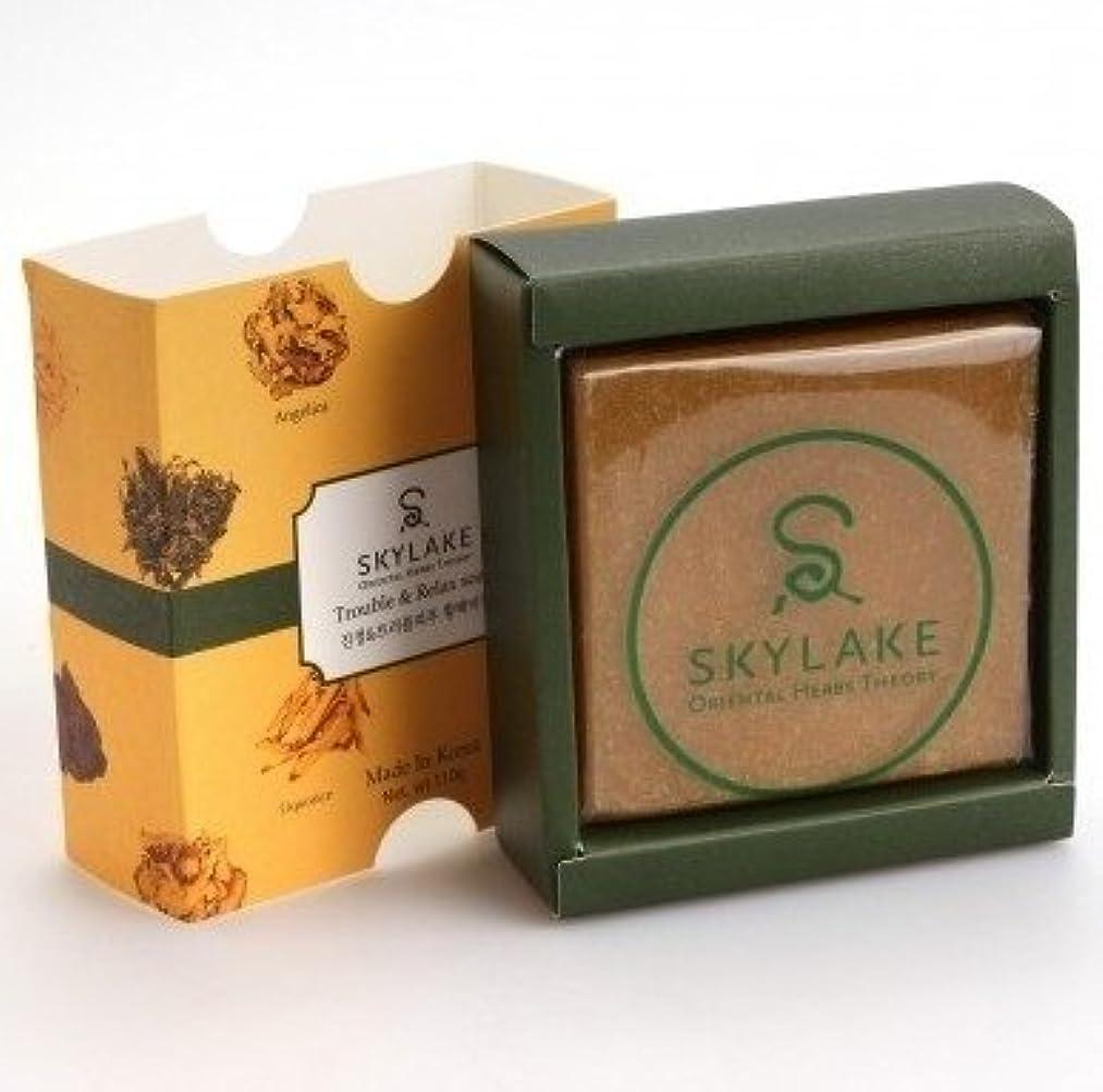 通行人にやにやランチョンハヌルホス[Skylake] 漢方アロマ石鹸Oriental Herbs Theory Soap (肌荒れ肌用)