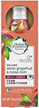 Best herbal essences foam conditioner Reviews