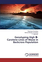 Genotyping High Β- Carotene Lines of Maize in Backcross Population