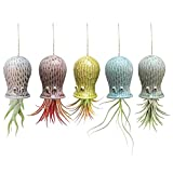 5 Pack Air Plant Holder Unique, Cute Octopus Air Plant Hanger Wall Planter, Ceramic Tillandsia Airplants Holders Hanging Wall Decor for Home Office (Color : Small (2 x 3.2 in))