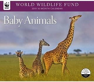 2019 WORLD WILDLIFE FUND Baby Animals Deluxe Wall Calendar