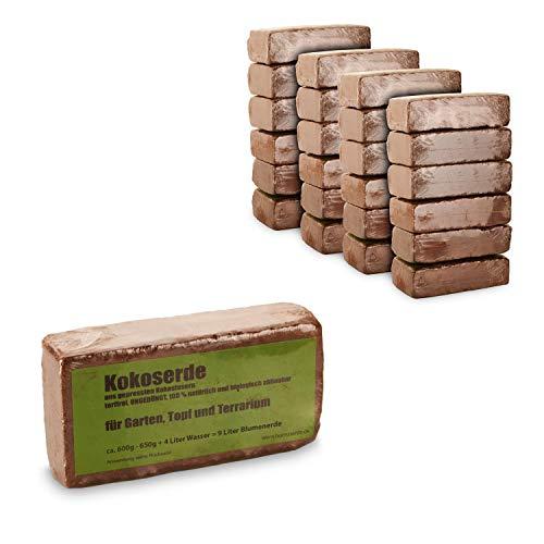 yayago Humusziegel - 24x Kokoserde -216 Liter gepresste Blumenerde aus Kokosfasern - torffrei, ungedüngt, 100% natürlich und biologisch abbaubar - für Garten, Topf und Terrarium 24x 650g