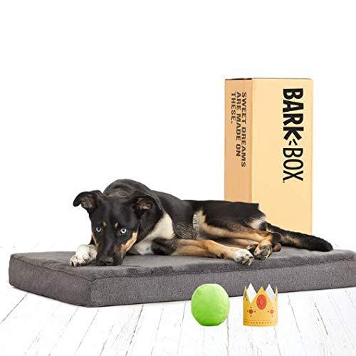BarkBox Orthopedic  Memory Foam Dog BedReview