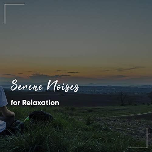 The Sleep Helpers, Serenity for Sleep, Deep Sleep Music Experience
