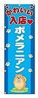 のぼり旗 ポメラニアン (W600×H1800)DOG、犬、ペットショップ