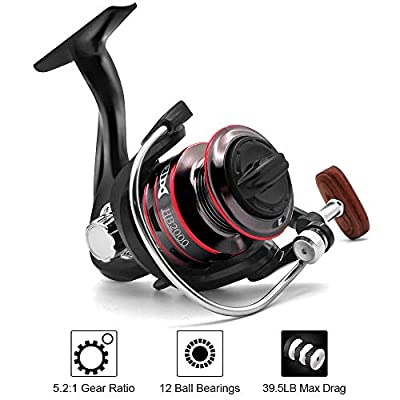 Fishing Reel, Spinning Reel, Ultralight 5.2:1 Gear Ratio, 12 Ball Bearings, 39.5LB Carbon Fiber Drag, Reversible Handle for Left and Right Retrieve, Perfect for Freshwater and Saltwater (H2000)