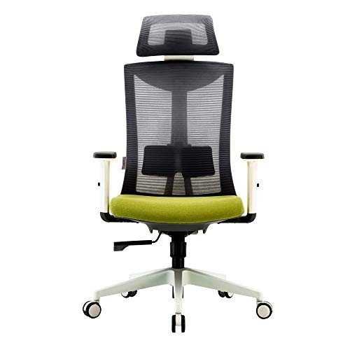 SIHOO Ergonomic Office Chair Computer Chair Adjustable Head & Arm Rests with Lumbar Support High Back with Breathable Mesh(Gray)