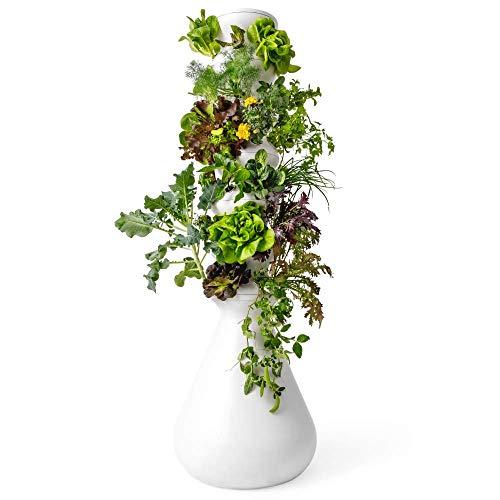 Lettuce Grow 36-Plant Hydroponic Growing System Kit, Outdoor Indoor Vertical Garden Herb Vegetable...