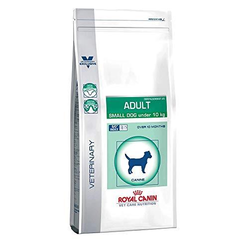 RoyalCanin Adult Small Dog 8 kg Especial Razas Minis y Pequeñas | Pienso Gastrointestinal para Perros Adultos con Problemas Digestivos y Bucales | Comida Intestinal Seca Que Elimina el Sarro Dental