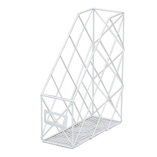 Lembeauty - Estante de almacenamiento de hierro para libros de escritorio, revistas, organizador de archivos de escritorio., hierro, Blanco, Single Grid