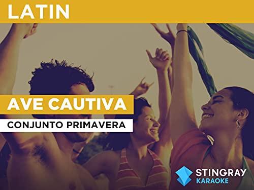 Ave Cautiva in the Style of Conjunto Primavera
