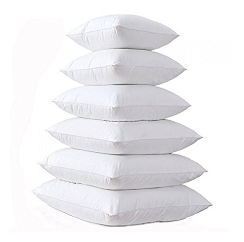 EGYPTO - White Duck Feather Cushion Pad Inner Insert - 100% Natural Cotton Anti Dust Mite And Down Proof Cover - Double Stitched Seams - Non Allergenic - Machine Washable (Pack Of Four, 24' x 24')