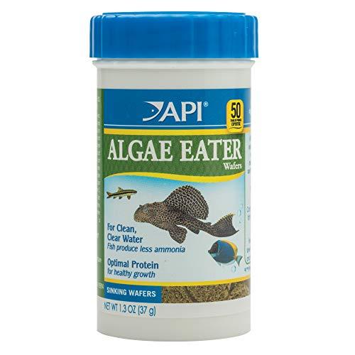 API ALGAE EATER WAFERS Algae Wafer Fish Food 1.3-Ounce Container
