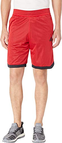 adidas Herren Basketball Sport Mesh Shorts, Herren, Shorts, Basketball Sport Mesh Short, scharlachrot, x-Large-Long