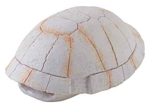 Exo Terra skelet met landschildpad,
