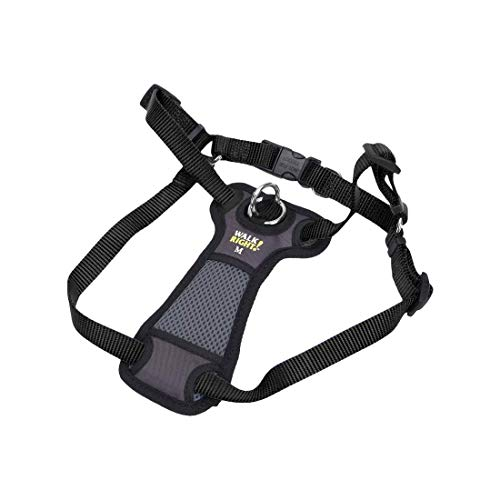 Coastal Pet Walk Right! Front-Connect Padded Dog Harness (Medium - 20